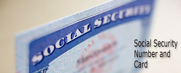 New Or Replacement Social Security Number And Card